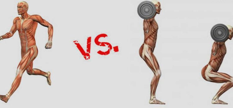 Cardio vs Weight Training | Which one should you choose